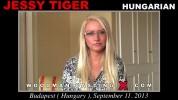 Jessy Tiger