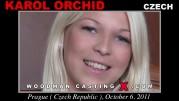 Karol Orchid
