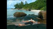 Tropical Illusions 2